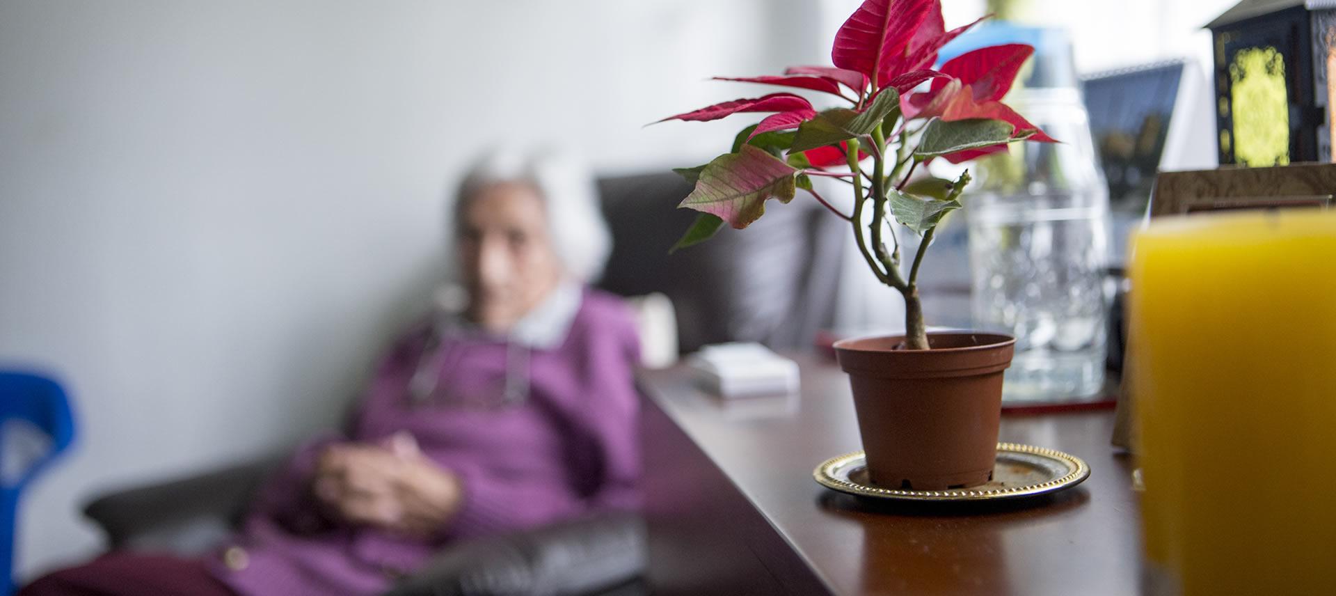 atención especial del adulto mayor